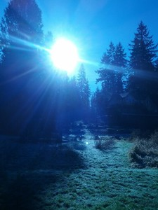 Parting Sunlight